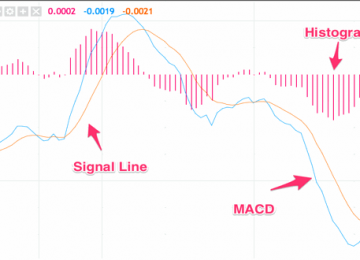 Backtrader MACD Indicator Review
